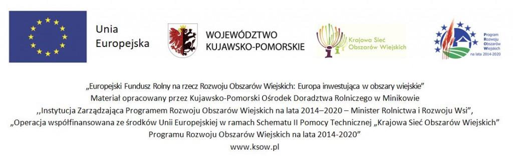 logotyp KSOW5